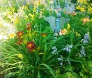 random daylily  garden image 9